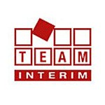 Team Interim